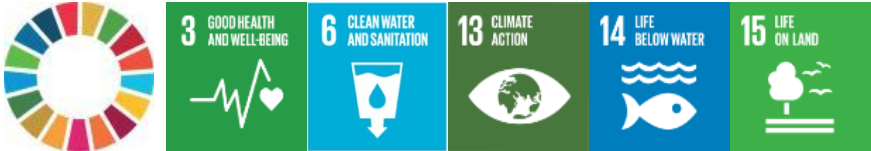Related UN Sustainable Development Goals